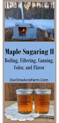 Make your own maple syrup! Part I explained how to identify the trees and collect the sap, and this part details how to boil off the sap, and how to filter and can the syrup. Also covers info on color and flavor.