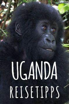 Reisetipps für Uganda und Ruanda - alles was du wissen solltest. Von der Planung bis zur Abreise!