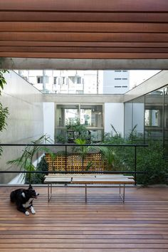 Galeria de Casa Jardins / CR2 Arquitetura - 3