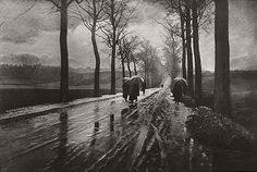 Leonard Misonne (1870 - 1943) was a Belgian photographer.  Misonne was a master pictorialist photographer, whose atmospheric landscapes and street scenes