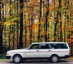 Falling for a Volvo wagon.