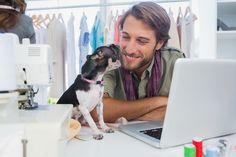 Sie würden Ihren Hund gerne mit ins Büro nehmen? Kein Problem, schließlich sorgt der Vierbeiner für mehr Produktivität und ein besseres Arbeitsklima...