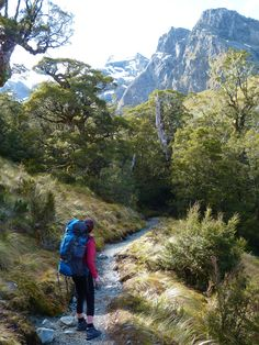 Routeburn Track One Day Walk to the Routeburn Falls, NZ Outdoor Life, Outdoor Fun, Thru Hiking, Appalachian Trail, Day Hike, Travel Goals, Adventure Awaits, Australia Travel, Outdoor Activities