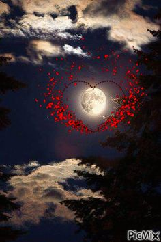 See the PicMix love moon belonging to on PicMix. Good Morning Love Gif, Lovely Good Night, Romantic Good Night, Good Night Prayer, Good Night Blessings, Good Night Sweet Dreams, Good Night Moon, Good Morning Good Night, Beautiful Good Night Images