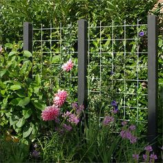 10 Unique Garden Fence Decoration Ideas to Brighten Your Yard - HomyBuzz Garden Arbor, Garden Trellis, Garden Fencing, Espalier, Garden Screening, Fence Landscaping, Unique Gardens, Garden Spaces, Garden Projects