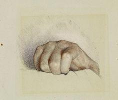 Raphael : right hand study