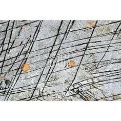 """L'#opera fa parte della #collezione """"#Fotocreature Dig-out"""". In """"Troppi concetti sulle #rocce"""" l'artista riprende le lezioni del #Bauhaus e del costruttivismo sovietico, racchiusi in un'unica persona: Vasilij #Kandinskij. La #fotografia presenta #forme geometriche rarefatte e regolari, #linee rette e #cerchi, che interagiscono tra di loro, creando una nuova #dimensione. La realtà delle #macchine, delle #industrie, si trasforma in una #dolce #melodia, trascritta su una roccia."""