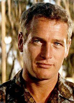 Paul Newman                                                                                                                                                      More