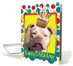 Pit Bull Terrier / American Pitbull card: Birthday Cupcake - Pitbull - Jersey Girl Greeting Card by Frankz Paw Printz