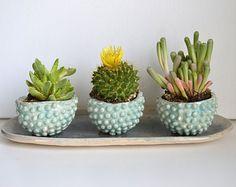 J A D E & S T O N E : handmade ceramic succulent planter set