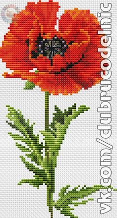 1 million+ Stunning Free Images to Use Anywhere Cross Stitch Rose, Cross Stitch Baby, Cross Stitch Flowers, Cross Stitch Charts, Cross Stitch Designs, Cross Stitch Patterns, Mosaic Flowers, Fabric Flowers, Cross Stitching
