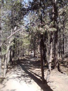 Hiking Trail Deschutes River
