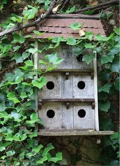 Simple and attractive large birdhouse. Mounts nicely against the ivy-covered wall. Bird Cages, Bird Feeders, Large Bird Houses, Woodlands Cottage, Pergola, Birds And The Bees, Backyard Birds, Exterior, Garden Projects