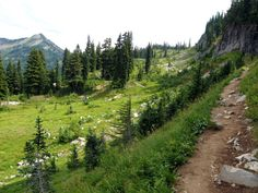 6. Naches Peak Loop Trail Beginner hikers and even the whole family can head out on this easy-going trail full of blooming wildflowers in Mount Rainier National Park