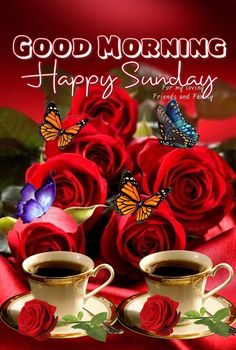 Happy Sunday Friends And Family sunday quotes happy sunday sunday wishes sunday images sunday greetings sunday quotes of the day Good Morning Happy Sunday, Happy Sunday Friends, Sunday Wishes, Good Morning God Quotes, Good Morning Nature, Sunday Greetings, Morning Quotes Images, Good Morning Prayer, Good Morning Good Night
