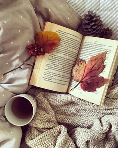 Loving Tea and Books September Wallpaper, Autumn Aesthetic, Book Aesthetic, Aesthetic Roses, Autumn Photography, Book Photography, Fall Inspiration, Free Phone Wallpaper, Autumn Cozy
