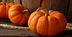 It's that time of year and pumpkin season is still going strong! Do you love pumpkin, but you're not sure what recipe to try next? Well, here are some pumpkin-y recipes that should keep… Color Combos, Color Schemes, Pumpkin Wallpaper, Color Balance, Halloween Coloring, Fall Pumpkins, Mini Pumpkins, Color Pallets, Family Pictures