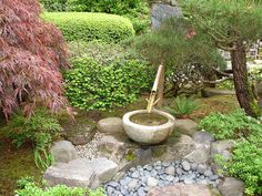 Portland Japanese Garden, Bird, Outdoor Decor, Birds