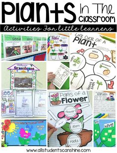 Super Effective Program Teaches Children Of All Ages To Read. Fun Writing Activities, Science Activities, Classroom Activities, Spring Activities, Interactive Activities, Preschool Classroom, Classroom Ideas, Science Experiments For Preschoolers, Science Lessons