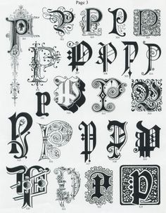 P logo idea 2