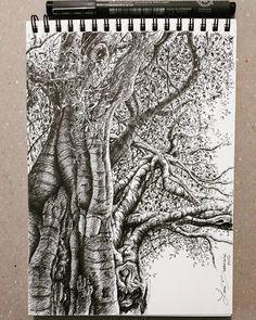 Lidia Barragán #sketch #tree #nature #dibujo #arbol #sketchbook