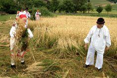 Naše tradice Dožínky, Czech Republic