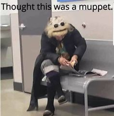 Remember the muppets? I hope so! Funny Laugh, Haha Funny, Funny Cute, Hilarious, Funny Stuff, Super Funny Pics, Funny Relatable Memes, Stupid Funny Memes, Funny Photos