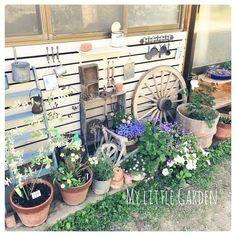 Entrance/DIY/セリア/鉢植え/中古住宅/ロハス...などのインテリア実例 - 2015-06-05 20:44:00