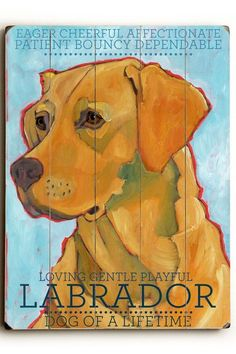 Yellow Labrador - I know she's not chocolate but I love this!