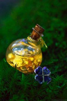 bottle-trevol-imagen