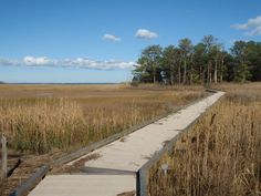 13. Delaware Seashore State Park, Rehoboth Beach
