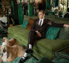 Tom Hiddleston - Gucci