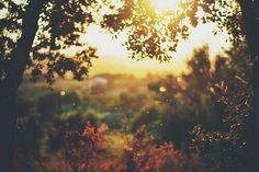 Discovered by Find images and videos about nature, autumn and header on We Heart It - the app to get lost in what you love. Beautiful World, Beautiful Places, Beautiful Dream, Beautiful Morning, Fuerza Natural, Morning Kisses, All Nature, We Are The World, Foto Art