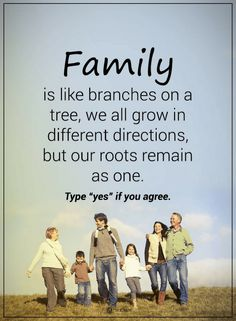 Quotes Family is like branches on a tree, we all grow in different directions, but our roots remain as one