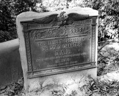 """Historical marker erected by the Daughters of the American Revolution - Tampa, Florida.  Tablet reads, """"[1539 - 1926] Marks the tree under which tradition say's [sic] De Soto parleyed with the Indians""""."""