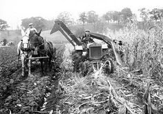 Tractor with a corn picker - 1928. A machine that was by carriage before big machines where invented