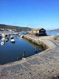 The Cobb - Lyme Regis  - Explore the World with Travel Nerd Nici, one Country at a Time. http://travelnerdnici.com