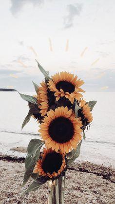 Sunflower Wallpaper for iPhone - SalmaPic