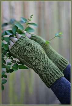 Ravelry: Verdure Mitts pattern by Alana Dakos << knitting fingerless leaf leaves foliate organic Fingerless Gloves Knitted, Knit Mittens, Knitting Socks, Hand Knitting, Mittens Pattern, Wrist Warmers, Knitting Accessories, Knit Or Crochet, Knitting Projects