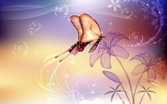 digitális pillangó virág tapéta