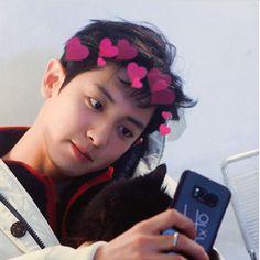 aqui podemos ver o Chanyeol, vulgo amor da minha vida Kaisoo, Chanbaek, Baekhyun, Chanyeol Cute, Park Chanyeol Exo, Kpop Exo, Exo K, Z Cam, Exo Memes