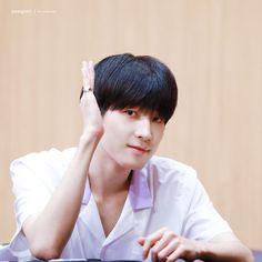 180803 at Dangsan TCC Center Fansigning Event © bouquet Woozi, Jeonghan, Adore U, Seventeen Wonwoo, Fandom, Funny Boy, Pledis 17, Seungkwan, My Forever