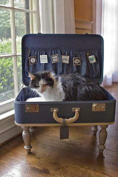 HOME & GARDEN: Des lits en valises recyclées pour nos amis les animaux