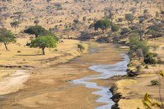 tarangire national park review