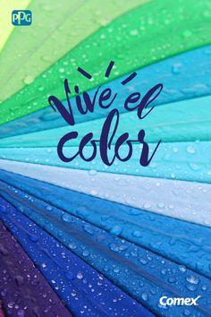 ¡Complementa tus días grises y fríos con una sombrilla llena de color! #ViveElColor donde menos lo imaginas.  #Comex #Colorful #Colores #Lluvias #Diversion #Alegria