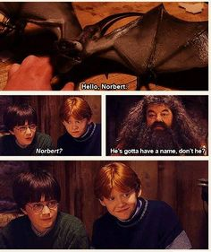 """Norbert