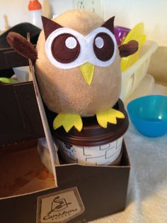 Owly wants Caribou Coffee too on a freezing cold winter day in Minnesota! Day 33 of #yearofowly #lifeofowly