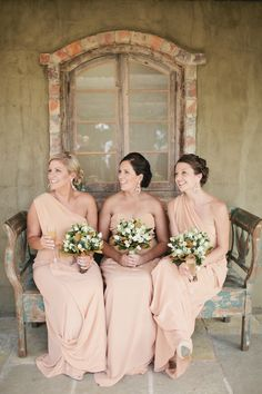 Apricot. Image by Love Katie and Sarah Photographers