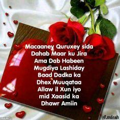 Macaaney quruxey sida Dahab Maar ku dhec jira ama Dab Habeen  Mugdiya Lashiday baad Dadka ka Dhex Muuqataa..............