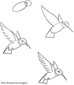 ideas for humming bird sketch hummingbird drawing Bird Drawings, Doodle Drawings, Animal Drawings, Easy Drawings, Doodle Art, Drawing Sketches, Pencil Drawings, Sketching, Random Drawings